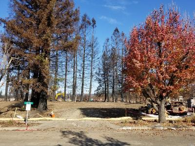 Santa Rosa Residential Lots & Land For Sale: 1335 Holly Park Way