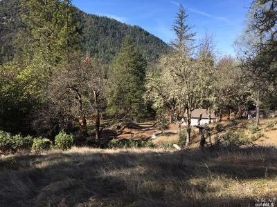 Upper Lake Residential Lots & Land For Sale: 13952 White Rock Canyon Road