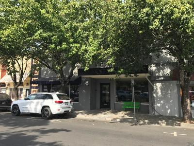 Healdsburg CA Commercial For Sale: $2,750,000