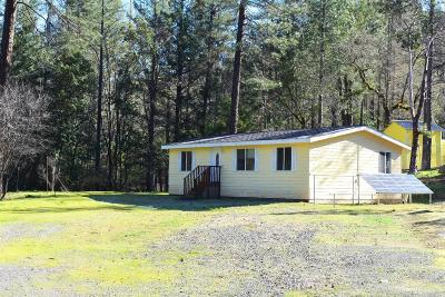 Potter Valley Single Family Home For Sale: 17521 Eel River Road