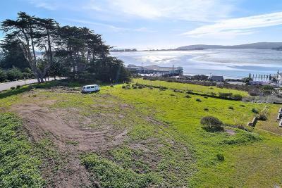 Bodega, Bodega Bay Residential Lots & Land For Sale: 900 Hwy 1