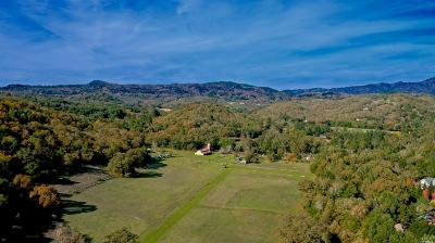 Glen Ellen Single Family Home For Sale: 2781 Warm Springs Road