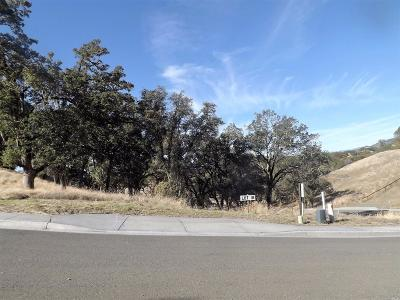 Ukiah Residential Lots & Land For Sale: 450 Tehuacan Road