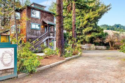 Duncans Mills Single Family Home For Sale: 25233 Steelhead Boulevard