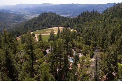 Calistoga Single Family Home For Sale: 432 Dutch Henry Canyon Road