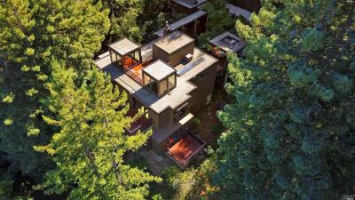 Marin County Single Family Home For Sale: 238 Summit Drive