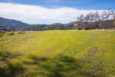 Ukiah Residential Lots & Land For Sale: 9480 Black Bart Trail