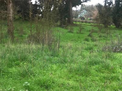 Residential Lots & Land For Sale: 7 Lund Hill Lane