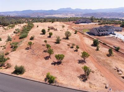 Lake County Residential Lots & Land For Sale: 19685 Nicholas Way