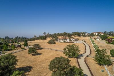 Loomis Single Family Home For Sale: 5266 Laird Road