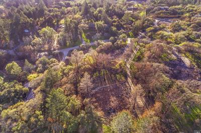 Sonoma County Residential Lots & Land For Sale: 2769 Rollo Road