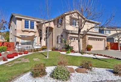 Vacaville Single Family Home For Sale: 3024 Papin Place