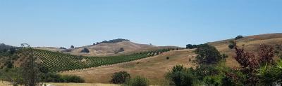 Petaluma Farm & Ranch For Sale: 3351 D Street Extension