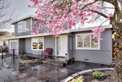 Marin County Single Family Home For Sale: 406 Vendola Drive