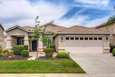 Vacaville Single Family Home For Sale: 131 Diablo Creek Way