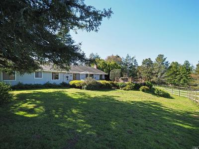 Sebastopol Single Family Home For Sale: 10810 Barnett Valley Road