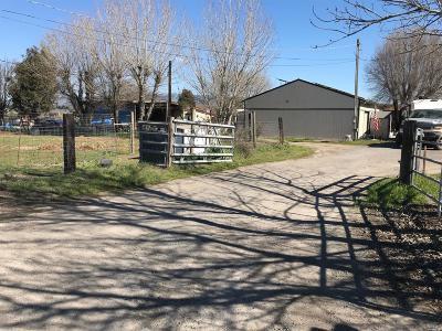Petaluma Farm & Ranch For Sale: 590 Cavanaugh Lane
