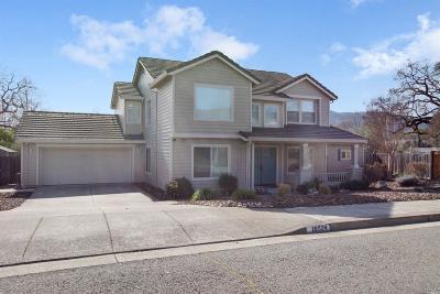 Sonoma Single Family Home For Sale: 16524 Meadow Oak Drive
