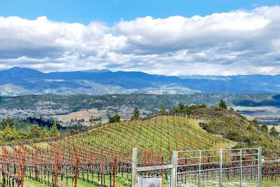 Sonoma County, Mendocino County, Marin County, Napa County, Lake County Residential Lots & Land For Sale: 5925 Chemise Road