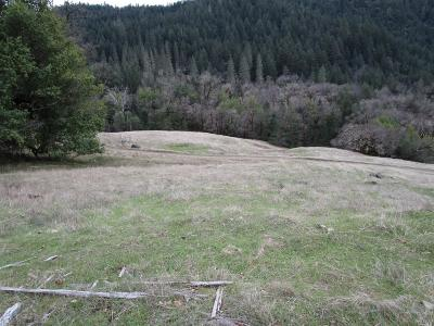 Upper Lake Residential Lots & Land For Sale: 20625 17 N 17 Road