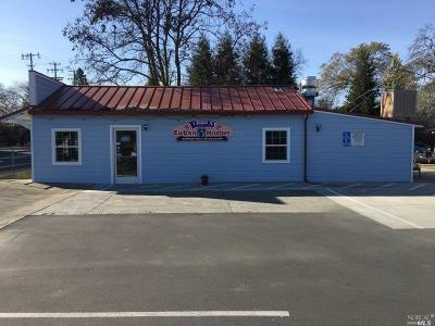 Sonoma County Commercial For Sale: 8750 Old Redwood Highway East