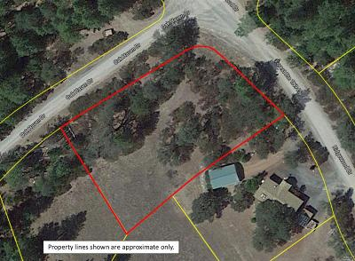 Lake County  Residential Lots & Land For Sale: 3901 Oakhaven Drive