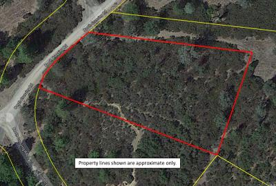 Lake County  Residential Lots & Land For Sale: 30196 Booth Crossing Road