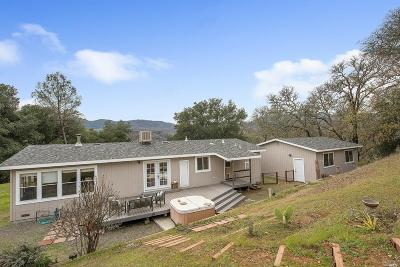 Napa Single Family Home For Sale: 5110 State Highway 128