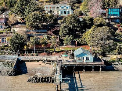 Marin County Single Family Home For Sale: 5000 Paradise Drive