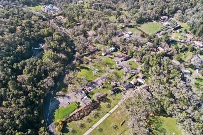 Glen Ellen Multi Family 5+ For Sale: 1515 Warm Springs Road