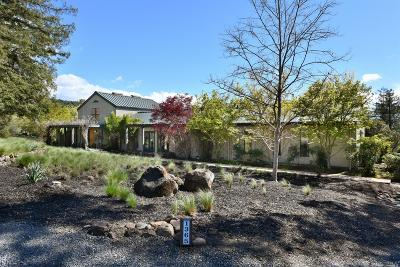 Healdsburg Single Family Home For Sale: 1365 South Fitch Mountain Road