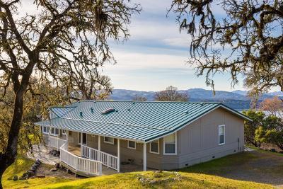 Ukiah Single Family Home For Sale: 3925 Deerwood Drive