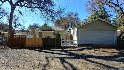 Clearlake Single Family Home For Sale: 10625 Pingree Road
