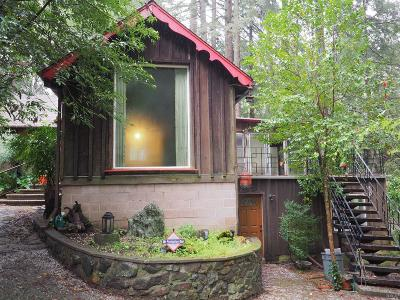 Guerneville Single Family Home For Sale: 14850 Old Cazadero Road