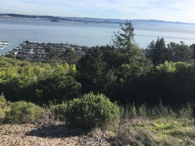Marin County Residential Lots & Land For Sale: 4675 Paradise Drive