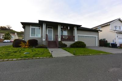 Lakeport Single Family Home For Sale: 330 Island View Drive
