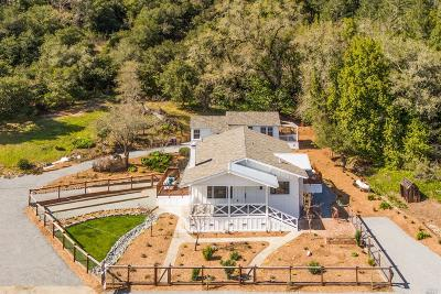 Healdsburg Single Family Home For Sale: 9975 Westside Road
