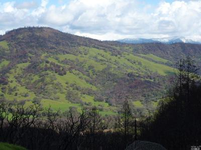 Redwood Valley CA Residential Lots & Land For Sale: $420,000
