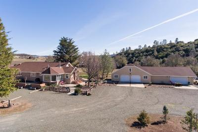 Kelseyville Farm & Ranch For Sale: 8001 Adobe Creek Road