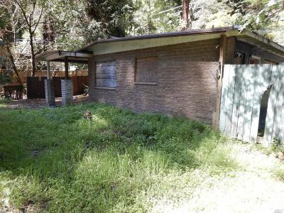 Guerneville CA Single Family Home For Sale: $198,000