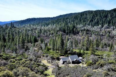 Lake Pillsbury Single Family Home For Sale: 31322 Little Doe Court