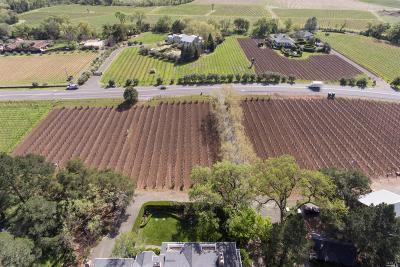 Calistoga Farm & Ranch For Sale: 3950 Silverado Trail