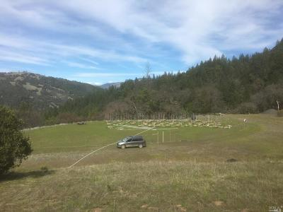 Mendocino County Residential Lots & Land For Sale: 5919 Woodman Creek Road