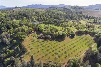 Lower Lake Farm & Ranch For Sale: 12220 Perini Road