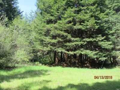 Fort Bragg CA Residential Lots & Land For Sale: $785,000