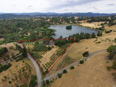 Sonoma County Single Family Home For Sale: 23537 Vineyard Road