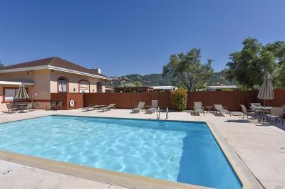 Calistoga Mobile Home For Sale: 48 Magnolia Drive #48