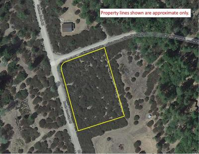 Lake County  Residential Lots & Land For Sale: 3193 Kings Canyon Drive