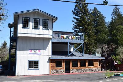 Guerneville CA Commercial For Sale: $695,000