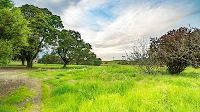 Napa Residential Lots & Land For Sale: 5266 Old Sonoma Road